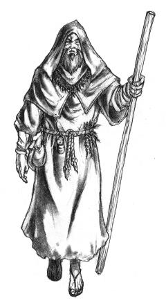 Druid by Mark Huffman